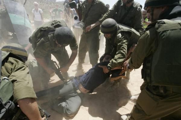 In 2 weeks, Israeli forces kill Palestinian, injure 200, detain 100, demolish 16 structures, displace 35 people, bulldoze road