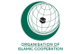 OIC demands international community to press Israel over repression of prisoners